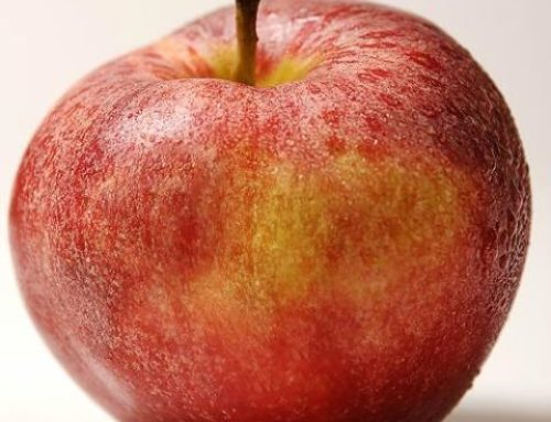 NS Apple growers double the amount of apples in 2 years